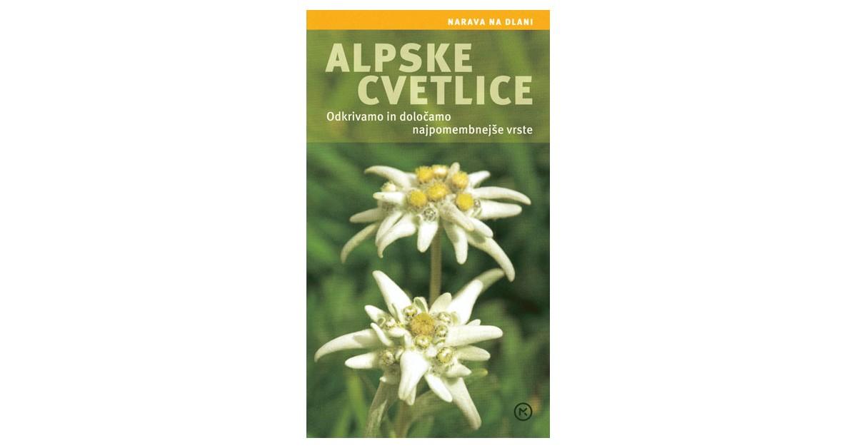 Alpske cvetlice - Helga Hofmann | Menschenrechtaufnahrung.org