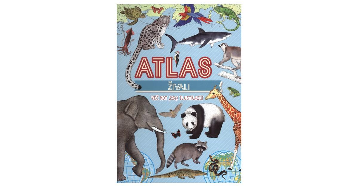 Atlas živali - Irina Tumko | Fundacionsinadep.org