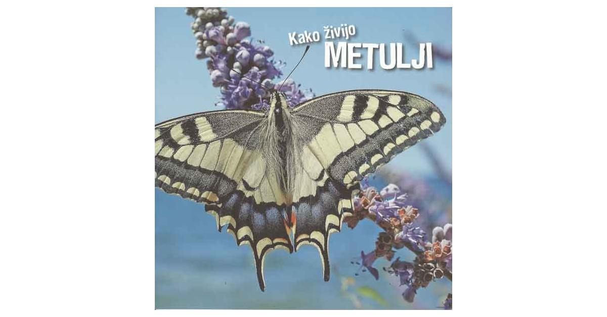 Kako živijo metulji - Ivan Esenko   Fundacionsinadep.org