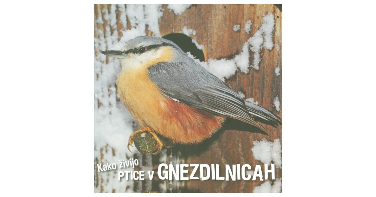 Kako živijo ptice v gnezdilnicah - Ivan Esenko | Menschenrechtaufnahrung.org