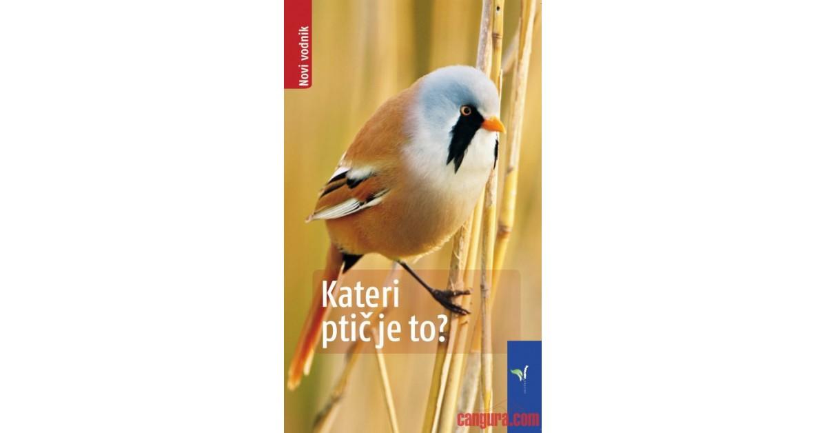 Kateri ptič je to? - Volker Dierschke | Menschenrechtaufnahrung.org