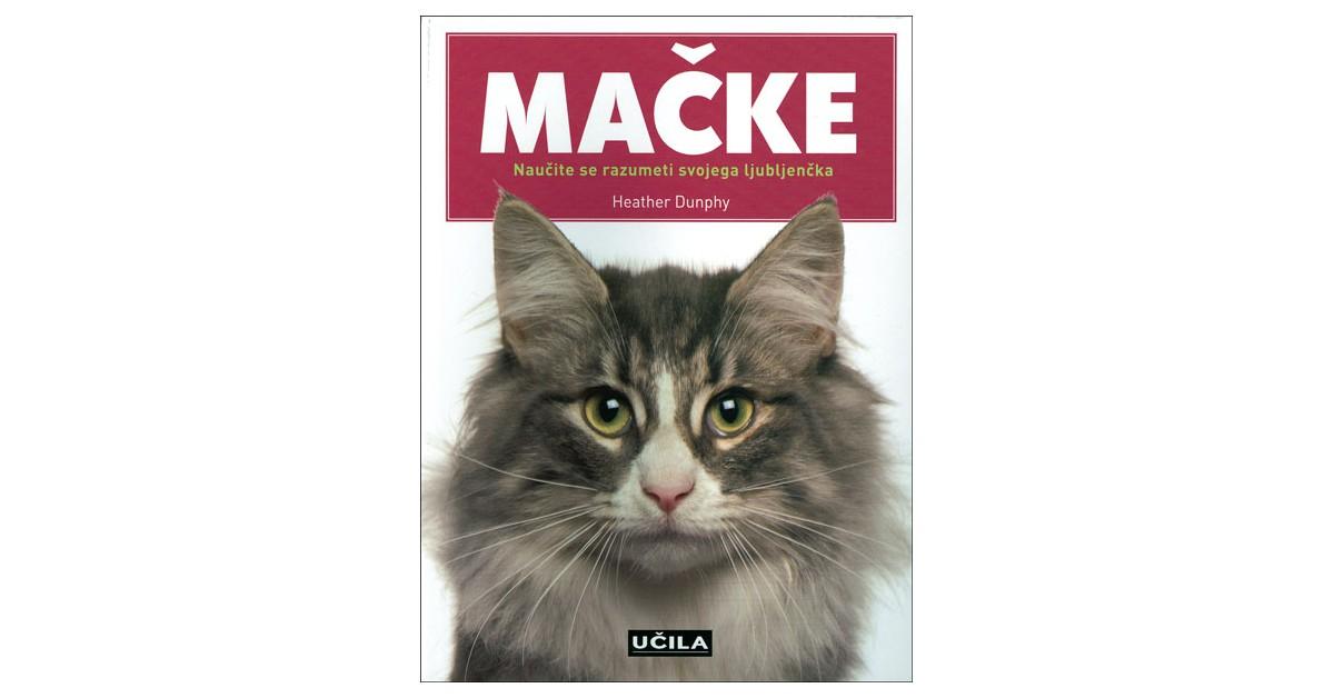 Mačke - Heather Dunphy | Menschenrechtaufnahrung.org