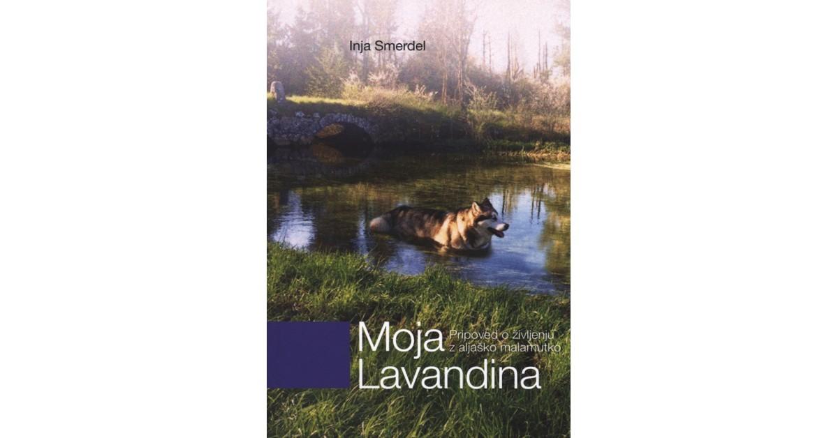Moja Lavandina - Inja Smerdel | Menschenrechtaufnahrung.org