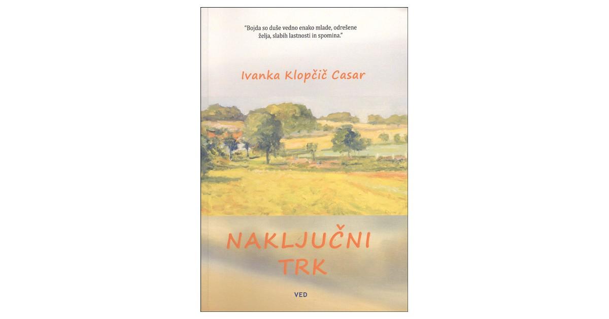 Naključni trk - Ivanka Klopčič Casar | Fundacionsinadep.org