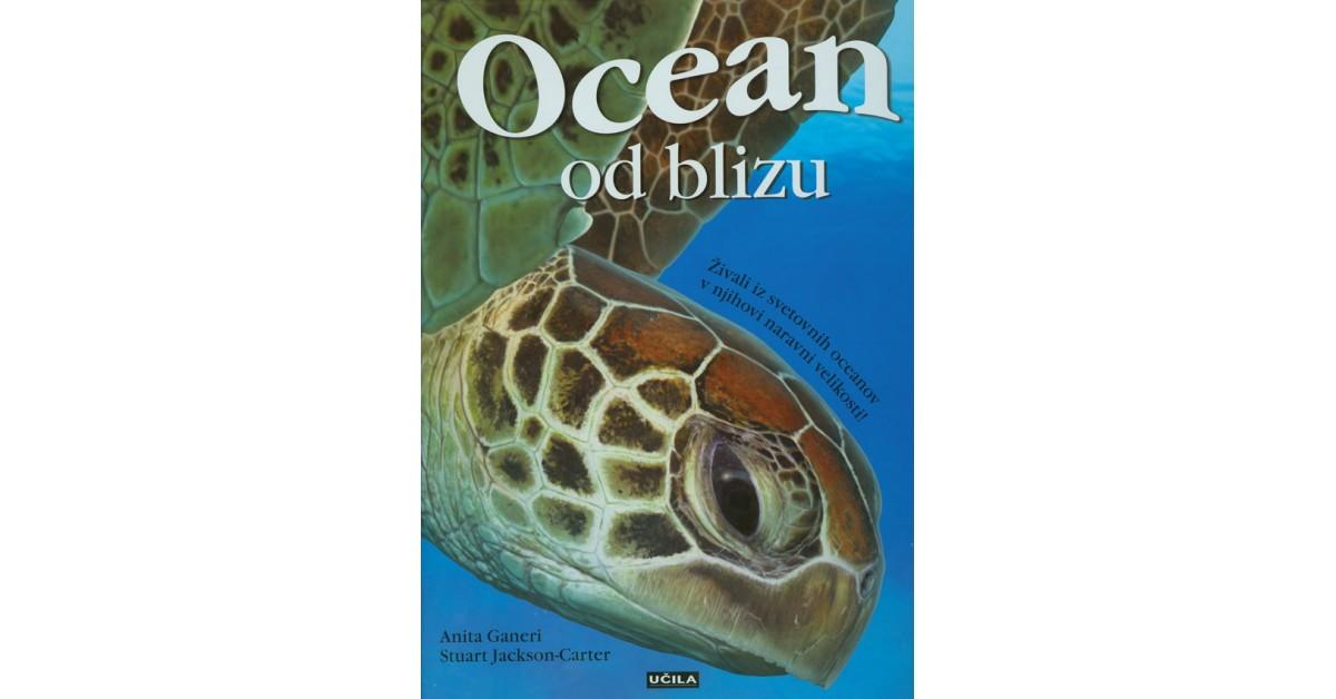 Ocean - Anita Ganeri   Menschenrechtaufnahrung.org
