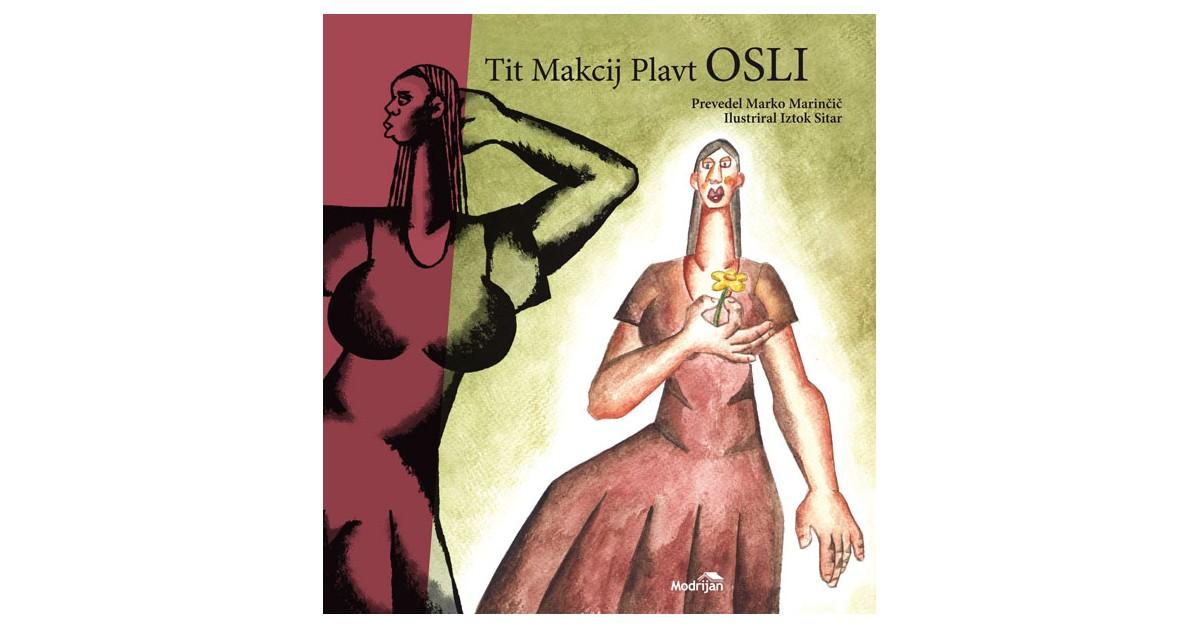 Osli - Tit Makcij Plavt | Fundacionsinadep.org