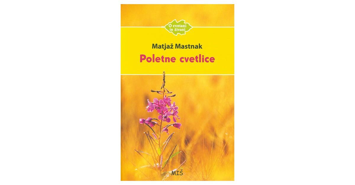 Poletne cvetlice - Matjaž Mastnak   Fundacionsinadep.org
