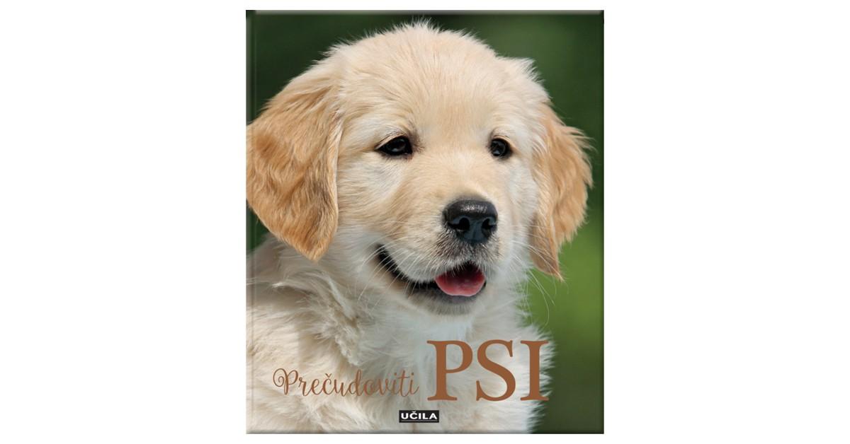 Prečudoviti psi - Nicola Jane Swinney | Fundacionsinadep.org