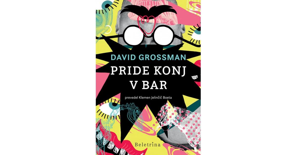 Pride konj v bar - David Grossman   Menschenrechtaufnahrung.org