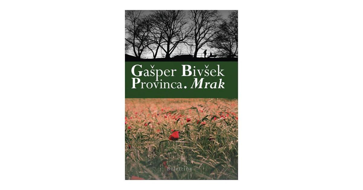 Provinca. Mrak - Gašper Bivšek | Menschenrechtaufnahrung.org