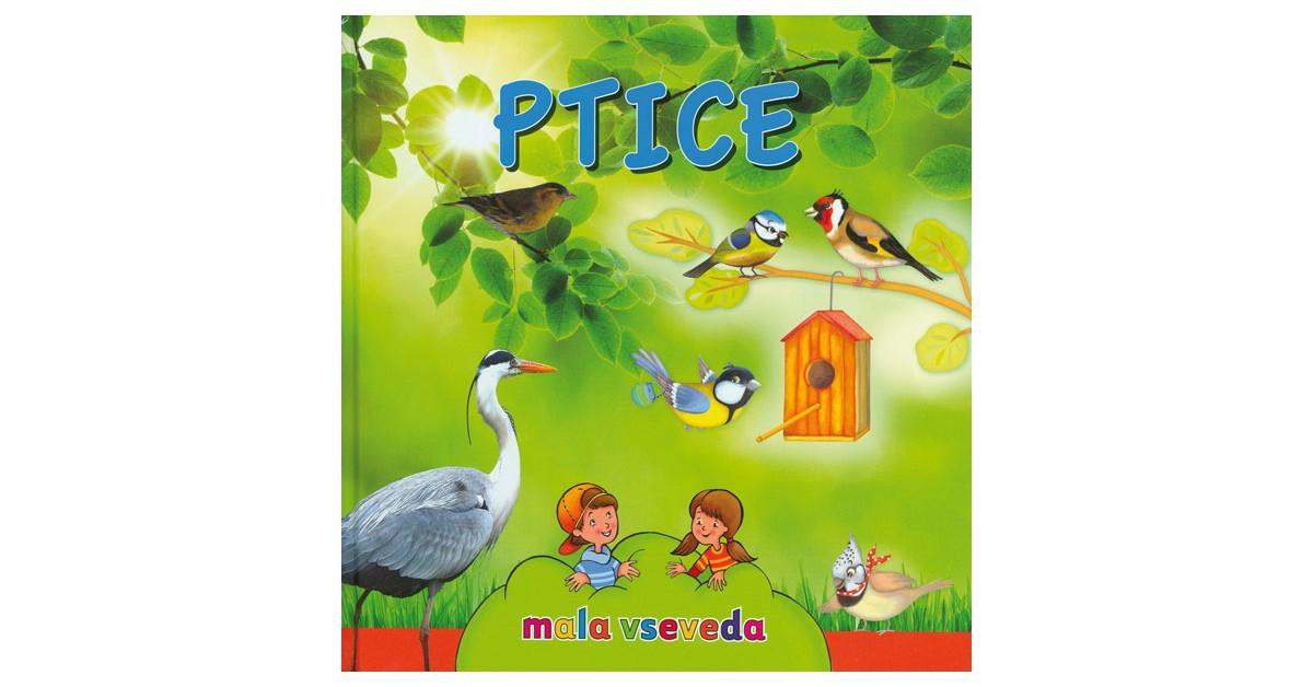 Ptice - Ivan Esenko | Fundacionsinadep.org