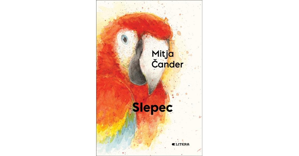Slepec - Mitja Čander | Fundacionsinadep.org