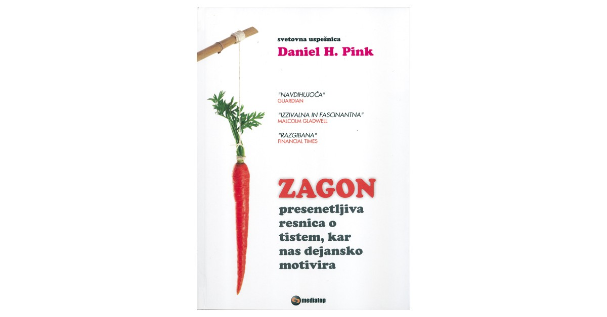 Zagon - Daniel H. Pink | Menschenrechtaufnahrung.org