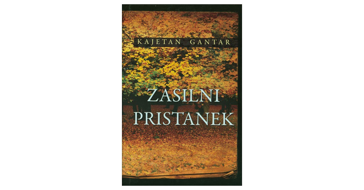 Zasilni pristanek - Kajetan Gantar | Fundacionsinadep.org