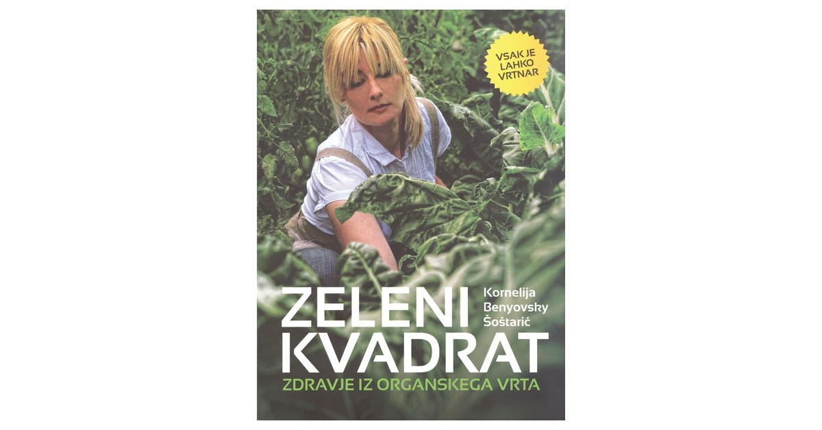 Zeleni kvadrat - Kornelija Benyovsky Šoštarić   Fundacionsinadep.org