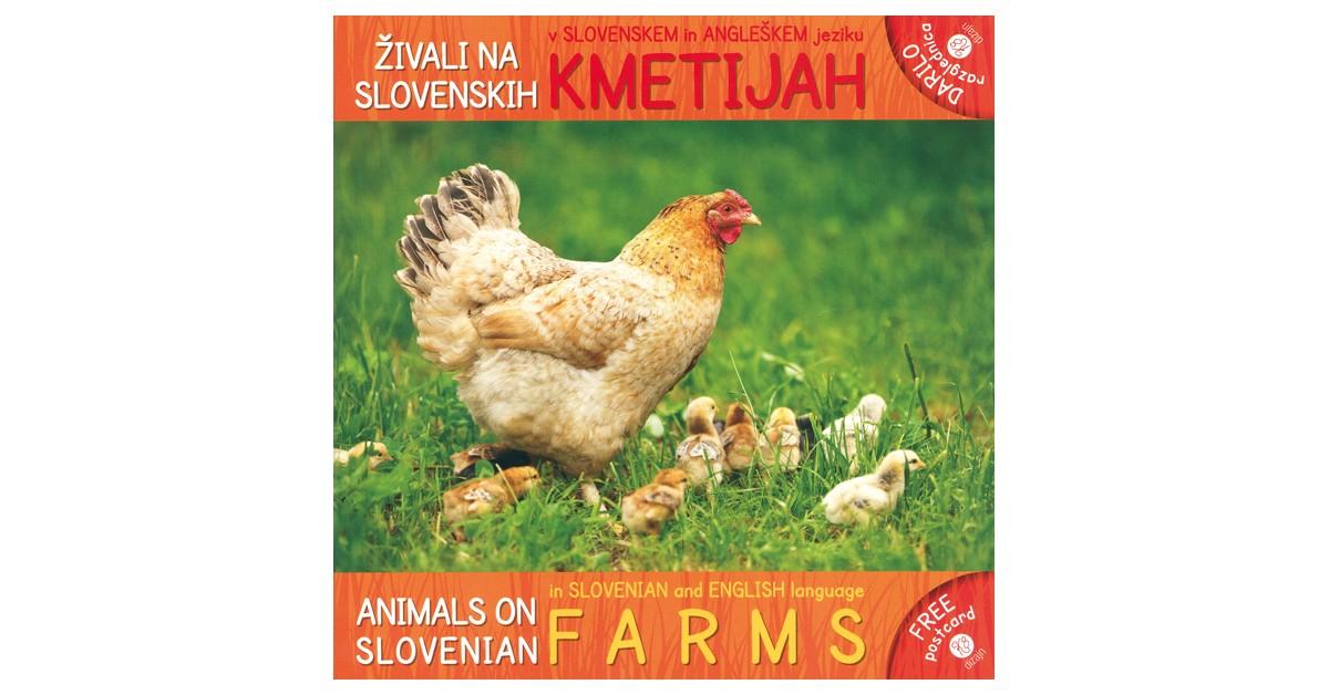 Živali na slovenskih kmetijah/Animals on Slovenian Farms - Sandra Pohole   Menschenrechtaufnahrung.org