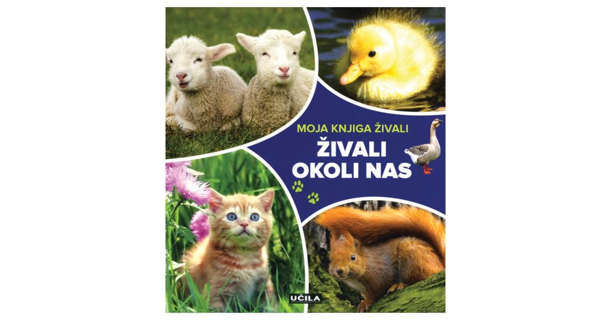 Živali okoli nas