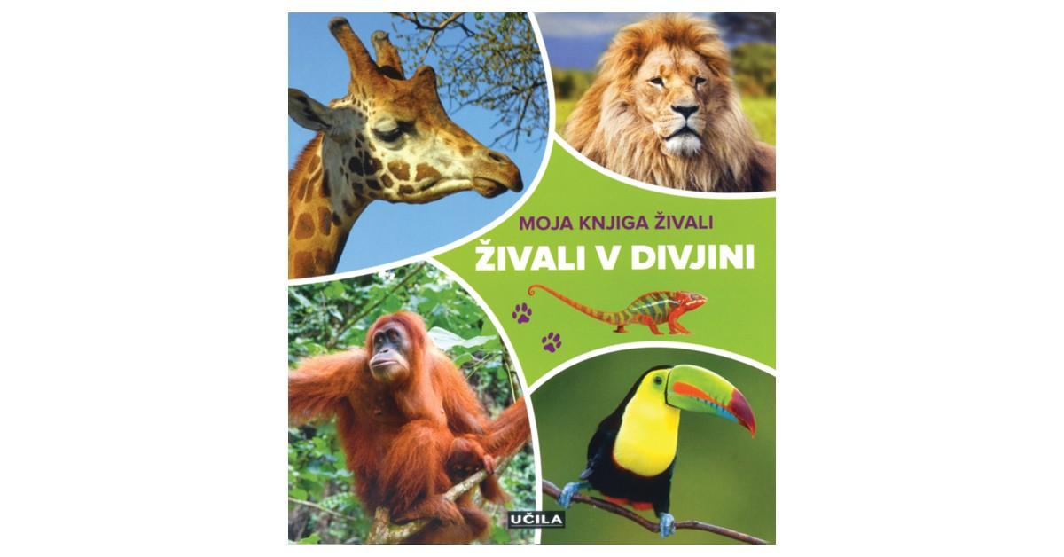 Živali v divjini