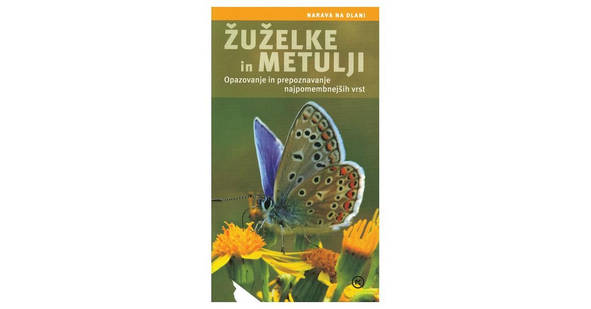 Žuželke in metulji - Ingrid von Brandt   Menschenrechtaufnahrung.org